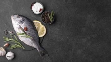 Minimalist fresh sea bream fish photo