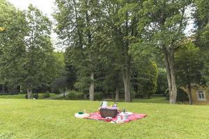 Picnic basket on grass field photo