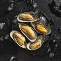 Oysters on ice photo