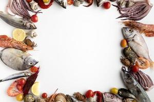 Top view assortment seafood frame photo