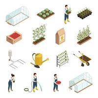 Los iconos isométricos de los elementos del invernadero fijaron la ilustración del vector
