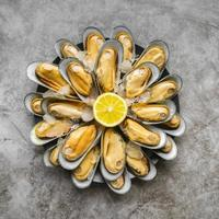 Fresh iced oysters photo