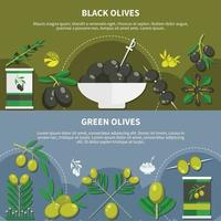 Olives Flat Banners Vector Illustration