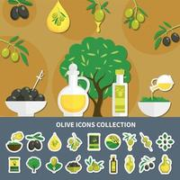 Olives Icons Collection Vector Illustration