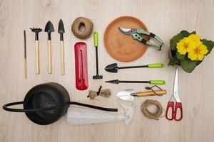 Flat lay of gardening tools photo