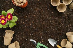 Vista superior de herramientas de jardinería y maceta. foto