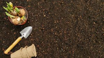 vista superior de suelo y herramientas de jardinería. foto