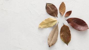 Vista superior de hojas secas de otoño con espacio de copia foto