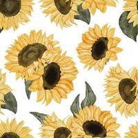girasol acuarela floral de patrones sin fisuras vector