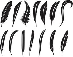 collection of feathers vector