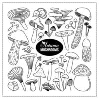 COLLECTION OF BLACK OUTLINE AUTUMN MUSHROOMS vector