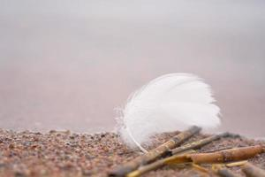 Feather and sticks on sand photo