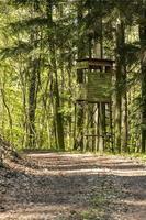 Asiento alto del cazador en el borde del bosque con fondo verde foto