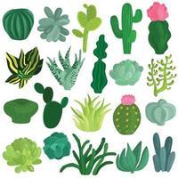 Cacti Succulents Plants Flat Set Vector Illustration