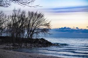 Winter tree silhouette photo
