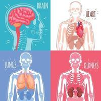 Ilustración de vector de concepto de diseño de órganos internos humanos