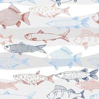 Seamless vector sketches of sea and river fish animal. Pike, carp, perch, sardine isolated fish sketch, sport or fish market theme.