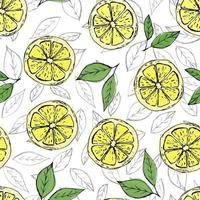 Colorful seamless pattern of hand drawn lemons and green leaves on white background. Perfect for textile manufacturing wallpaper posters and web. vector