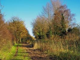 Winter sunlight on a country footpath near Pocklington East Yorkshire England photo