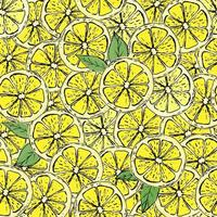 Hand drawn colorful seamless pattern of hand drawn lemons and green leaves. Perfect for textile manufacturing wallpaper posters and web. vector