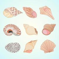 Sea shell vector icons in cartoon style