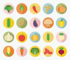 vector flat design types of vegetables set