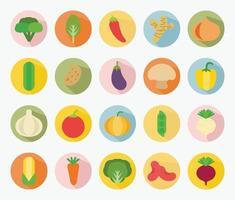 tipos de diseño plano vectorial de conjunto de verduras vector