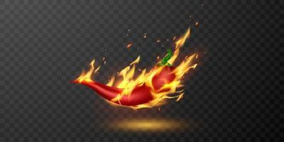 medium and hot fire chilli pepper. vector