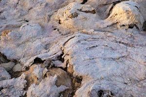 Textura abstracta creada por sal y barro en la orilla del lago salado de Larnaca foto
