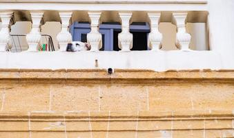 A dog gazes lazily on the veranda of a traditional house in the old city of Nicosia, Cyprus photo