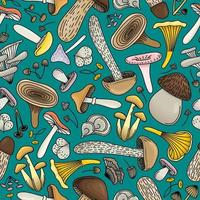 TURQUOISE BACKGROUND WITH COLORFUL MUSHROOMS vector