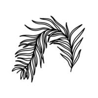 A branch isolated on a white background. The branch of the olive tree. Vegetation. Plant elements. Vector illustration in the Doodle style.