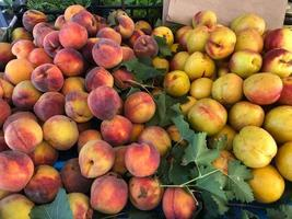 Juicy and tasty peaches photo