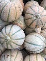 Heap of fresh cantaloupe melons photo