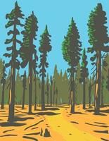 Giant Sequoias Growing in the General Grant Trail and Grove Section of the Greater Kings Canyon National Park Located in California WPA Poster Art vector