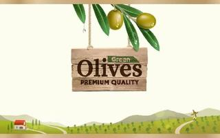 Green olive label with realistic olive branch on green olive farm background vector