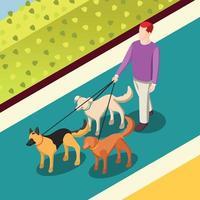 perros caminando ilustración de vector de fondo isométrico
