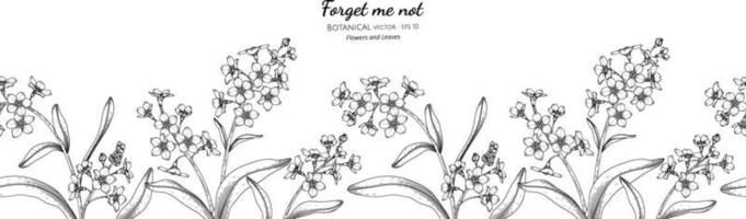 Seamless pattern Forget me not flower and leaf hand drawn botanical illustration with line art. vector