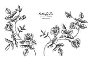 flor de guisantes mariposa y hojas dibujadas a mano ilustración botánica con arte lineal. vector