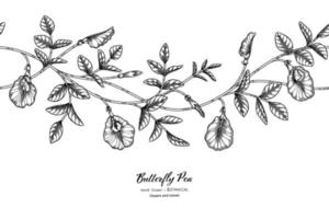 Seamless pattern Butterfly peas flower and leaf hand drawn botanical illustration with line art. vector