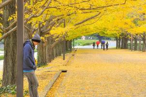 Portrait of Asian man standing under the ginkgo root tree among falling yellow leaves in the park photo