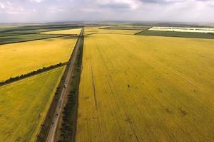 Aerial view of the natural landscape with a view of the field with grains photo