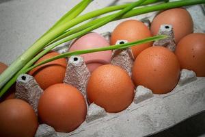 Homemade brown eggs in an eco carton photo