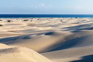 Maspalomas Dunes, Gran Canaria photo