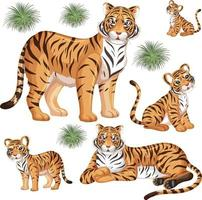 Patrón sin fisuras con tigre salvaje en muchas poses sobre fondo blanco. vector