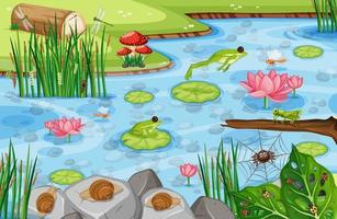 Pond scene with many green frogs vector