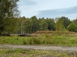 Skipwith Common National Nature Reserve North Yorkshire England photo