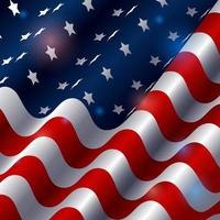 Beauty American Flag With Light Effect vector