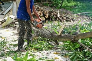 Manos de trabajador cortando el tronco con motosierra con aserrín salpicando. Movimiento borroso de motosierra de aserrado foto