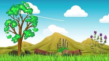 llanura verde y paisaje con montañas. video